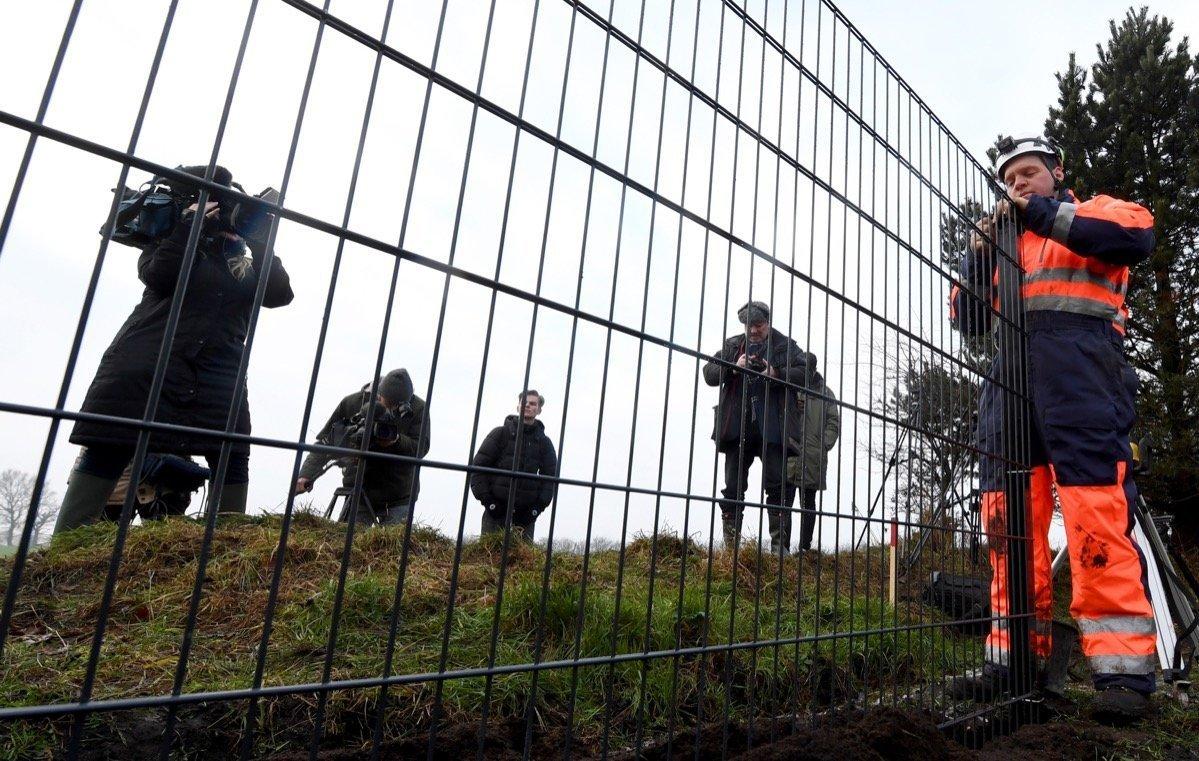 Aus Angst Vor Afrikanischer Schweinepest Asp Danemark Baut Einen