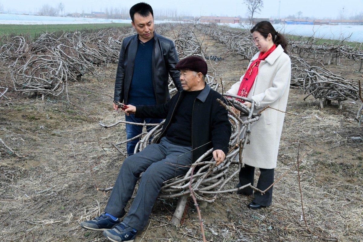 Wo Stühle Tische Und Regale Wachsen Chinese Verkauft Möbel Aus